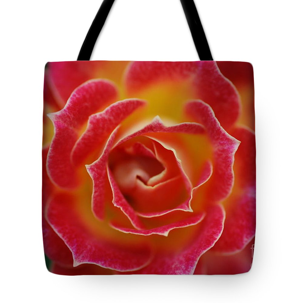 Rose Tote Bag featuring the photograph Rose by Catherine Lau