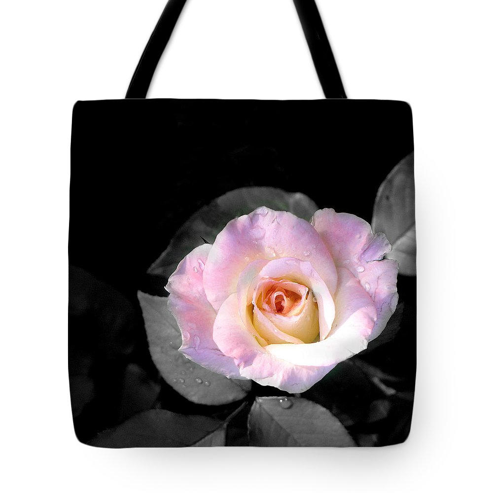 Princess Diana Rose Tote Bag featuring the photograph Rose Emergance by Steve Karol