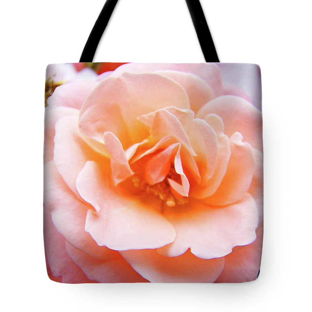 Rose Tote Bag featuring the photograph Rose Floral Art Print Peach Pink Roses Garden Canvas Baslee Troutman by Baslee Troutman