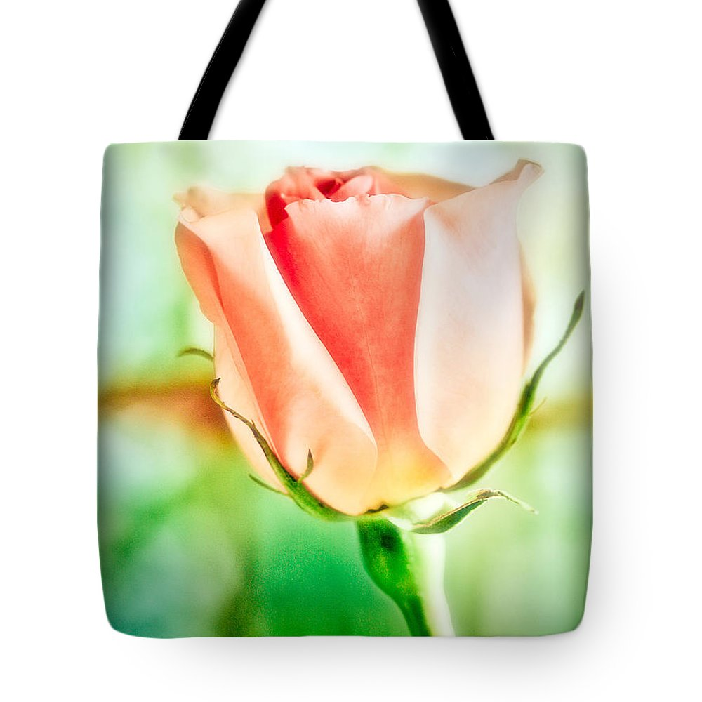 Rose Tote Bag featuring the photograph Rose In Window by Marilyn Hunt