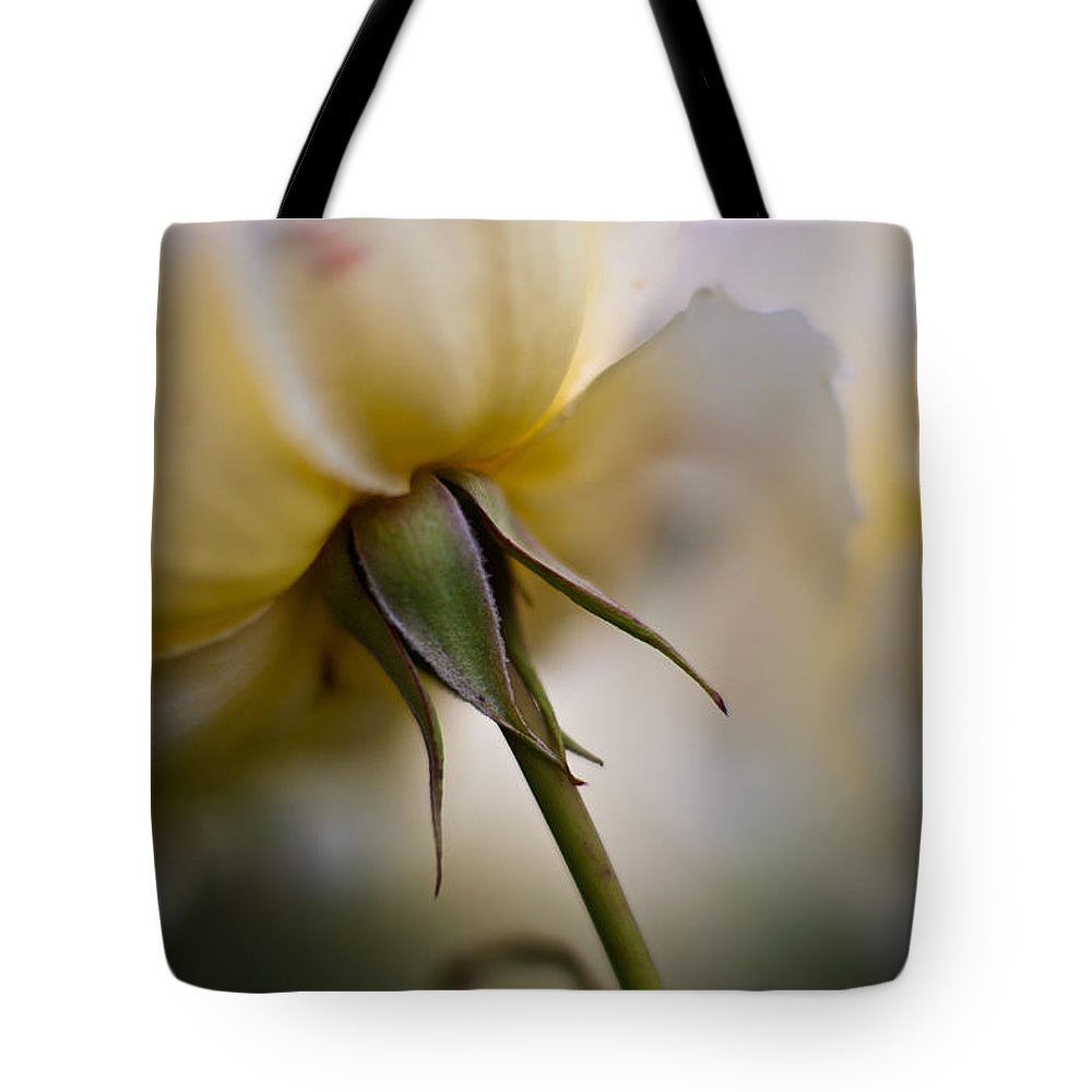 Rose Tote Bag featuring the photograph Rose Nuances by Mike Reid