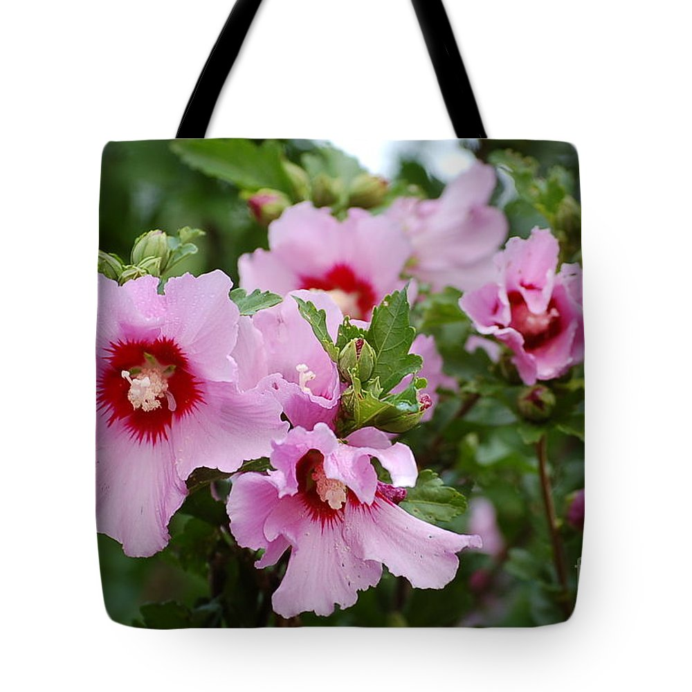 Rose Of Sharon Tote Bag featuring the photograph Rose Of Sharon by Cindy Elliott