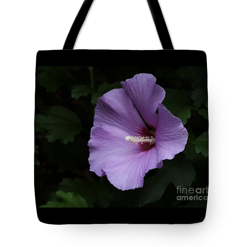 Flower Tote Bag featuring the photograph Rose Of Sharon - Hibiscus Syriacus by Ann Horn