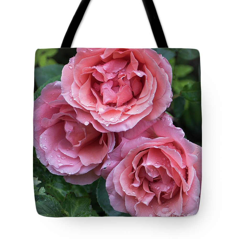 Blessings Tote Bag featuring the photograph Rose by Philip Enticknap
