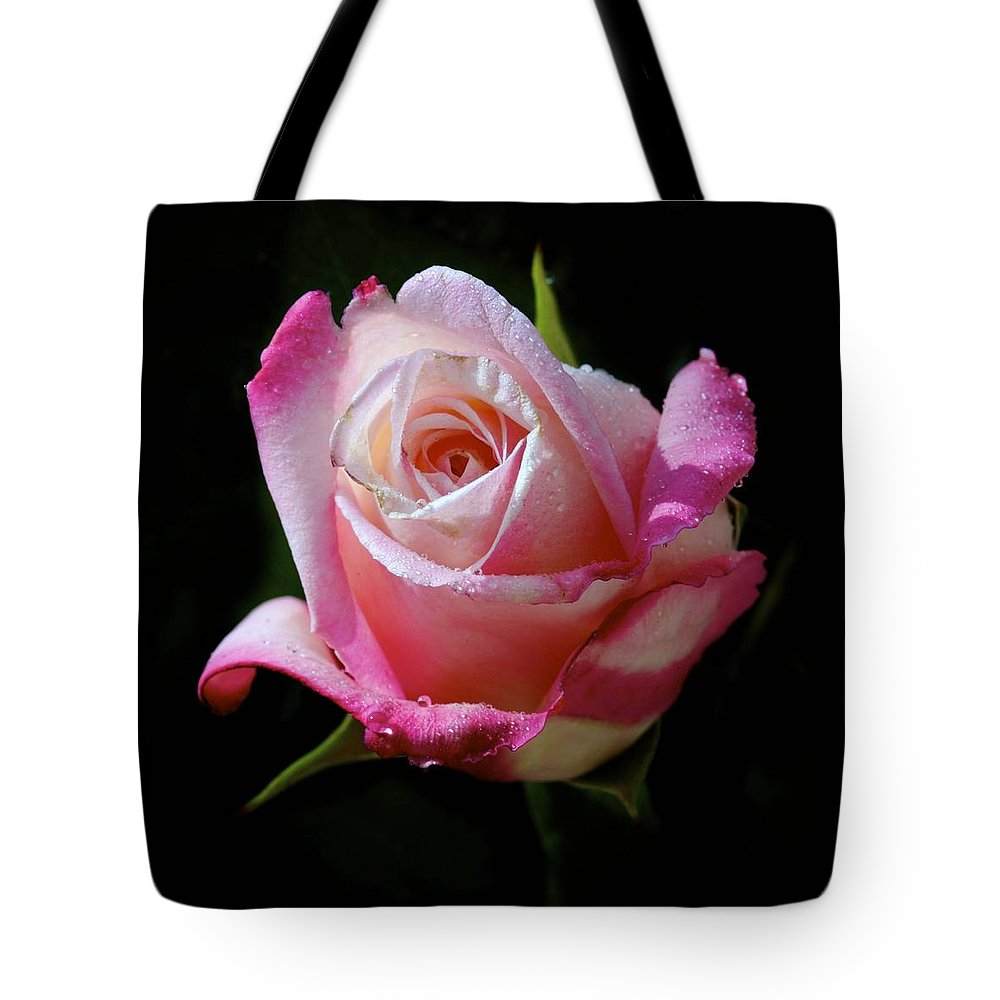 Rose Tote Bag featuring the photograph Rose Photo by Joyce Sherwin