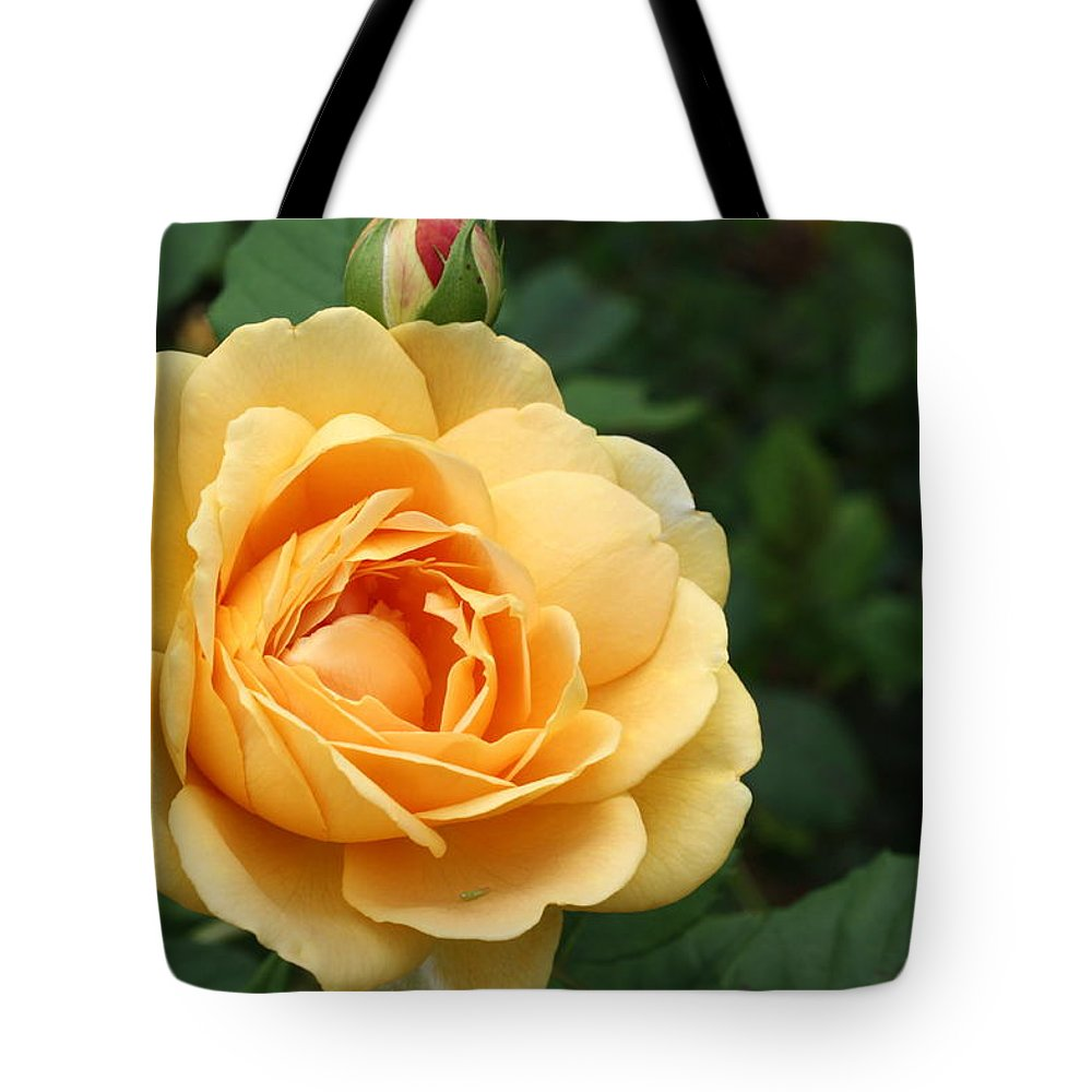 Tote Bag featuring the photograph Rose by Teresa Doran