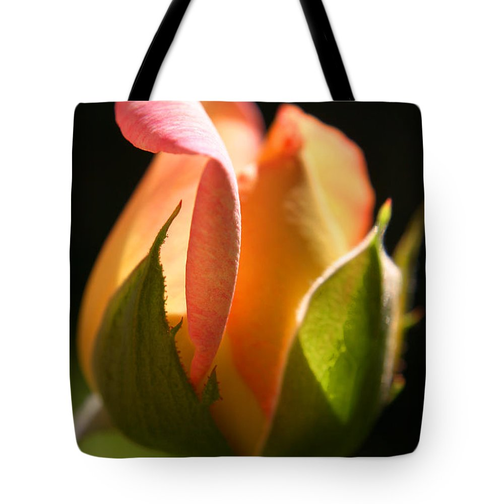 Rosebud Tote Bag featuring the photograph Rosebud by Ralph A Ledergerber-Photography