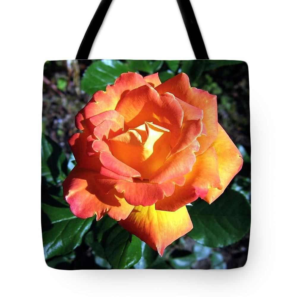 Rose Tote Bag featuring the photograph Roses 1 by Will Borden