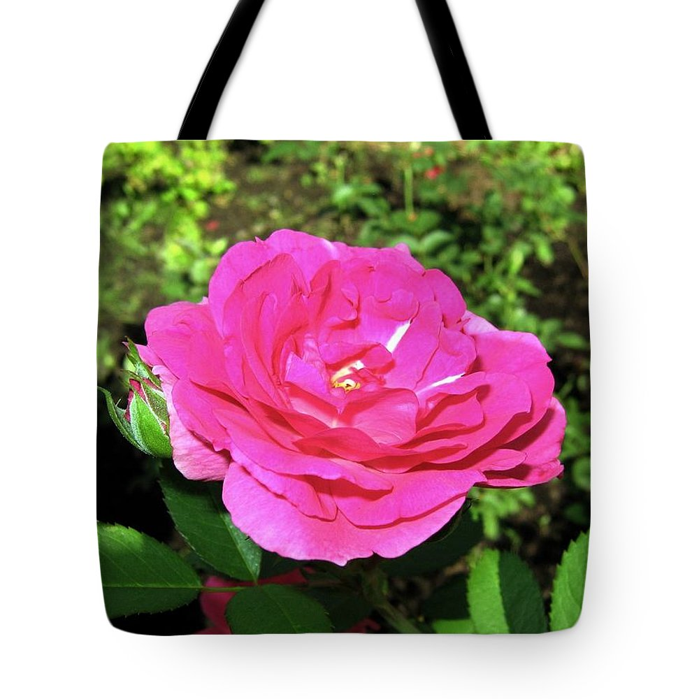 Rose Tote Bag featuring the photograph Roses 10 by Will Borden