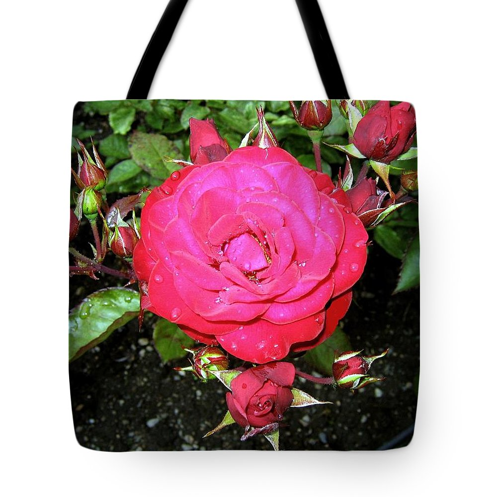 Rose Tote Bag featuring the photograph Roses 5 by Will Borden
