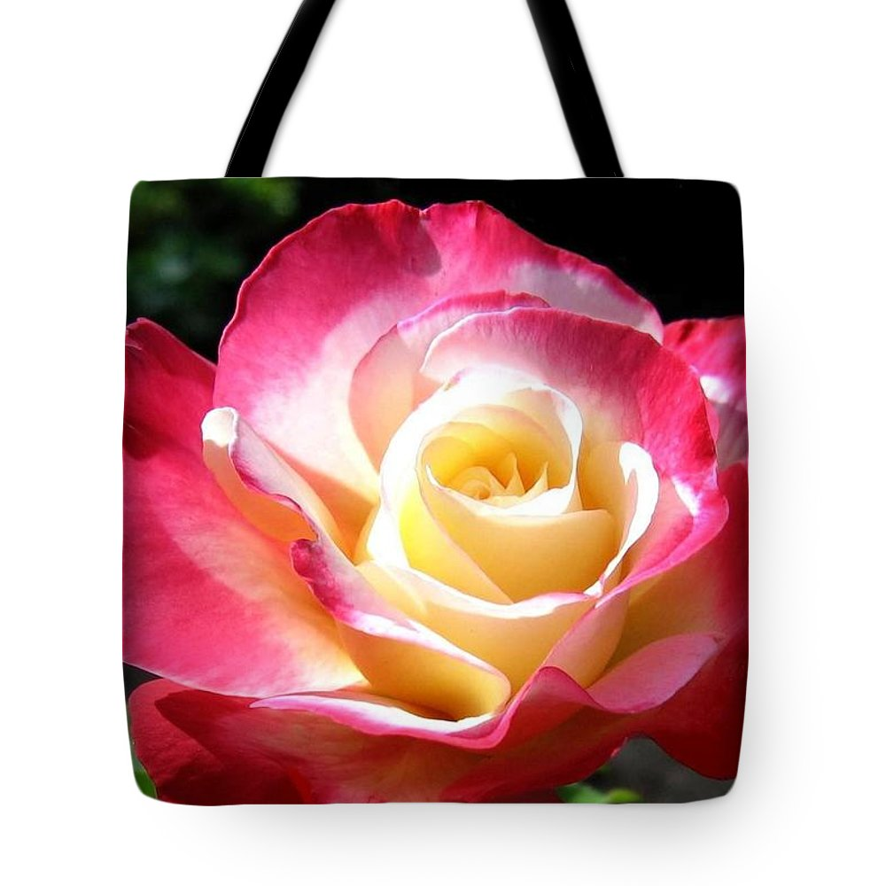 Rose Tote Bag featuring the photograph Roses 7 by Will Borden