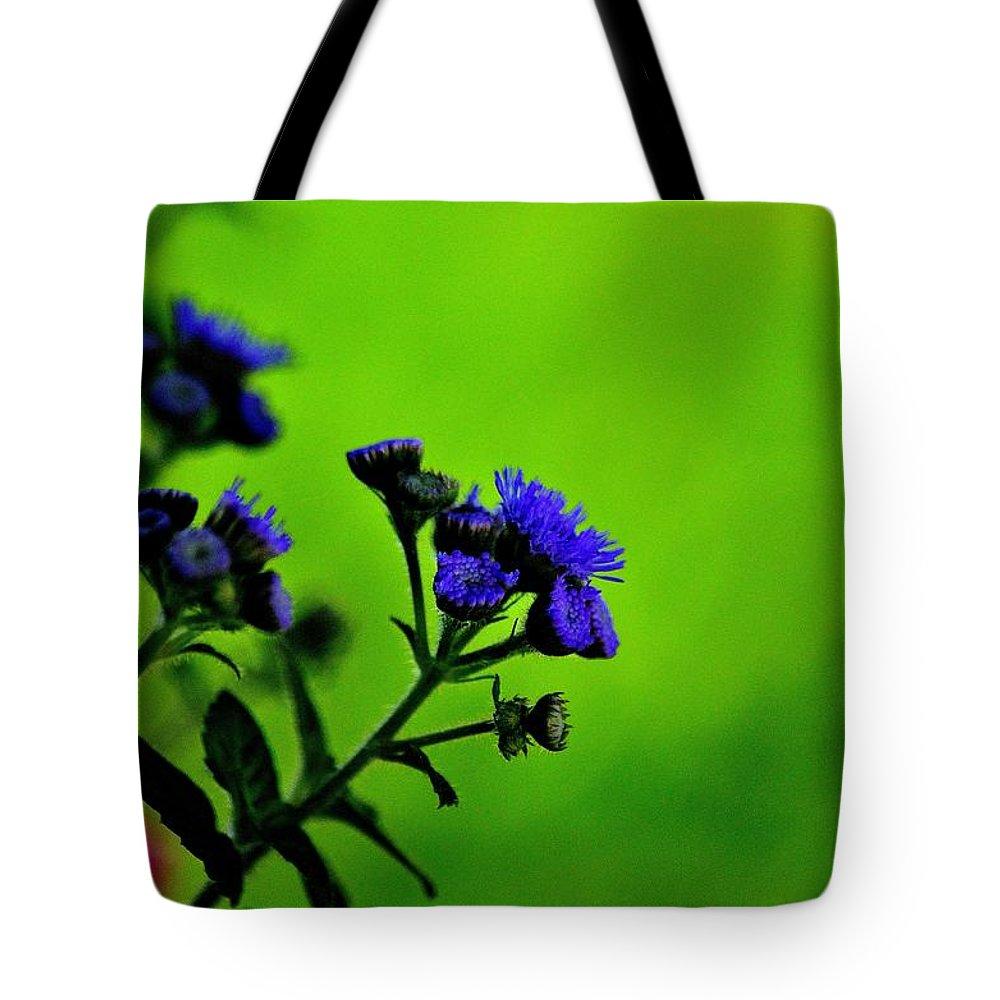 Royal Blue In A Sea Of Green Tote Bag featuring the photograph Royal Blue In A Sea Of Green by Charles J Pfohl