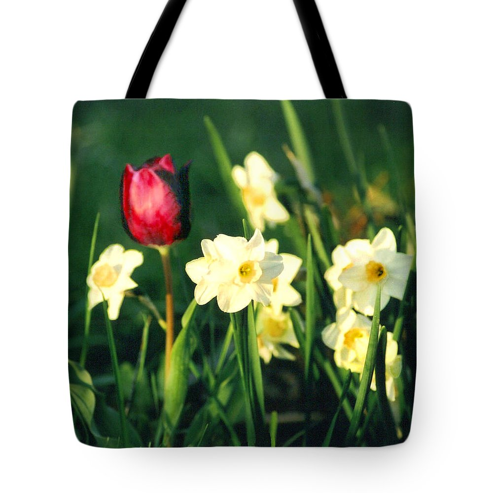 Tulips Tote Bag featuring the photograph Royal Spring by Steve Karol