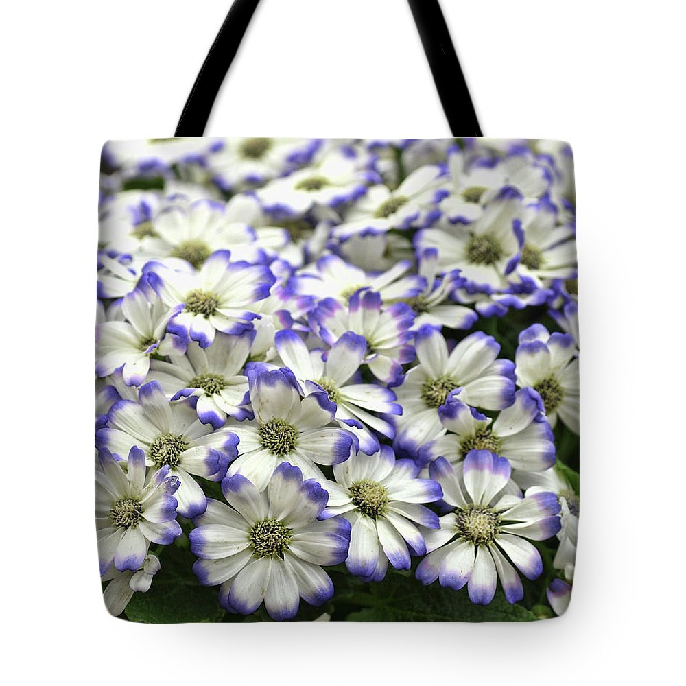 Flower Tote Bag featuring the photograph Royal Tips by JAMART Photography