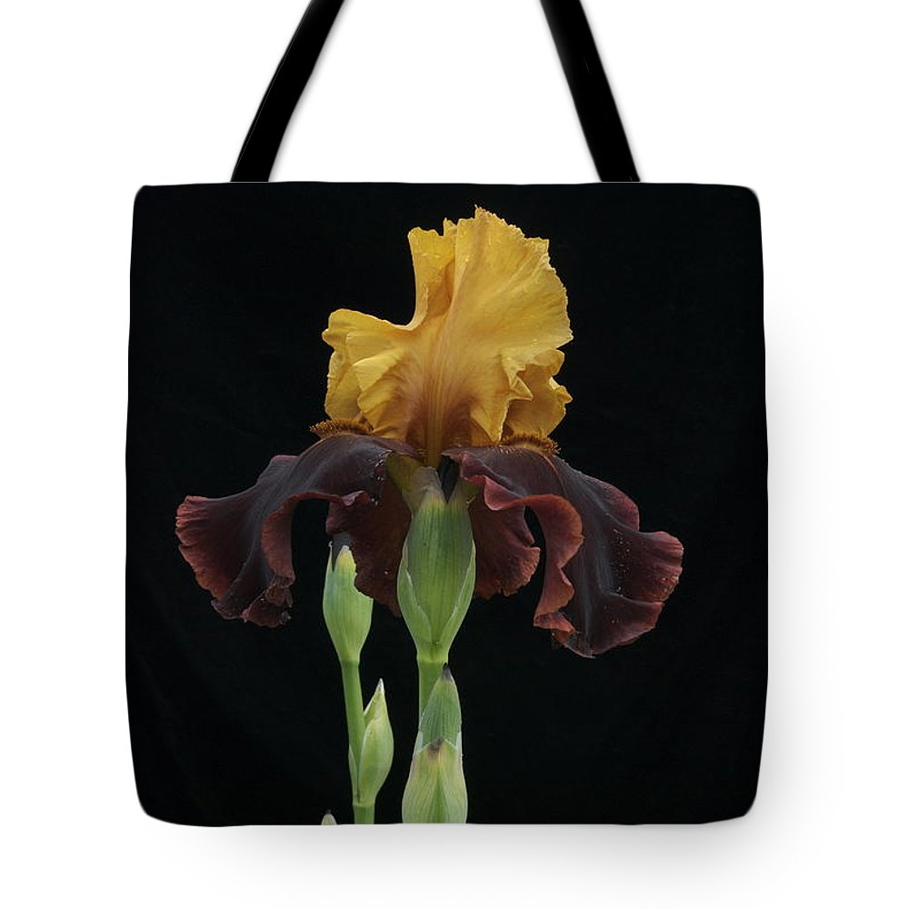 Iris Tote Bag featuring the photograph Royalty by Michael Peychich