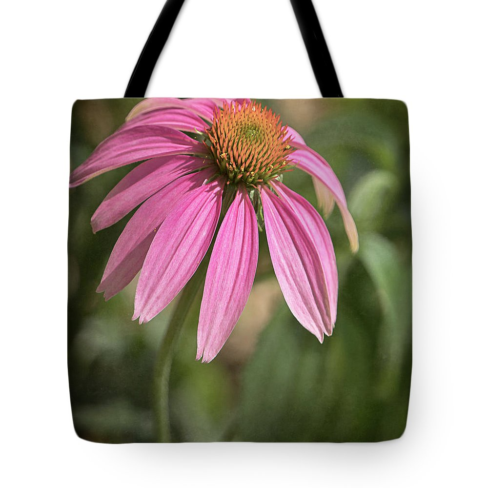 Tl Wilson Photography Tote Bag featuring the photograph Rudbeckia Morning by Teresa Wilson