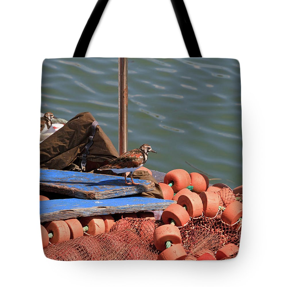 Ruddy Turnstone Tote Bag featuring the photograph Ruddy Turnstones Perching On Fishing Nets by Louise Heusinkveld