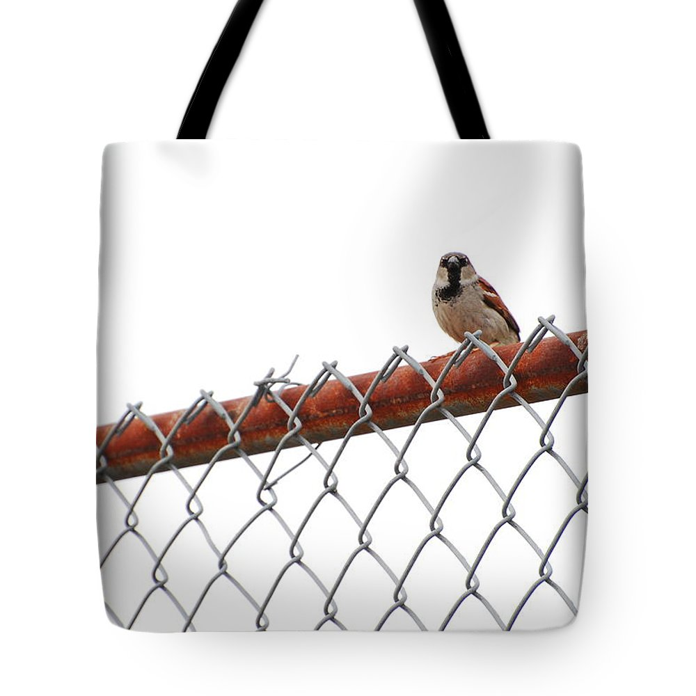 Bird Tote Bag featuring the photograph Rusty by Jean Booth