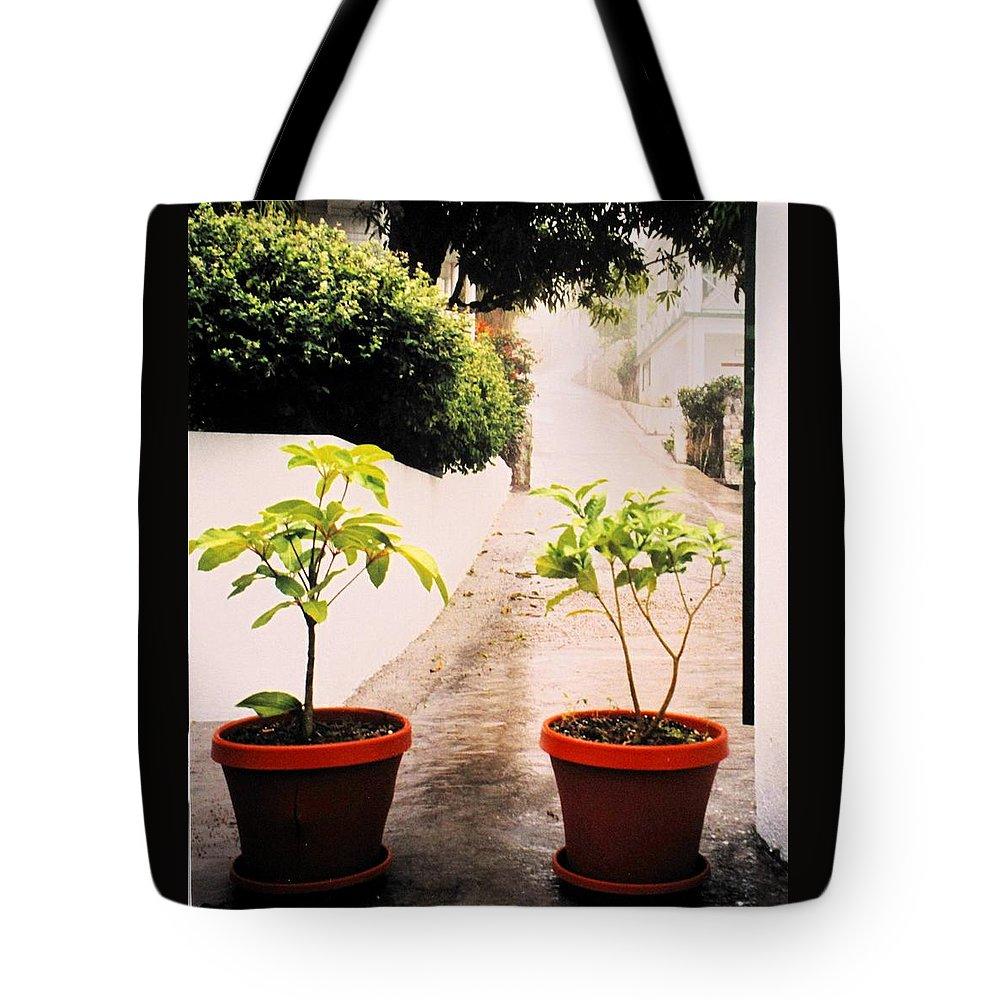 Saba Tote Bag featuring the photograph Saba by Ian MacDonald
