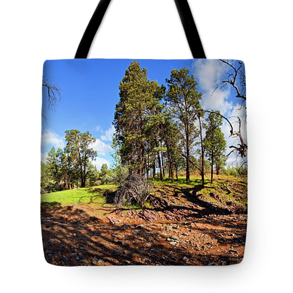 Sacred Canyon Flinders Ranges South Australia Australian Landscape Pano Panorama Outback Spring Tote Bag featuring the photograph Sacred Canyon, Flinders Ranges by Bill Robinson