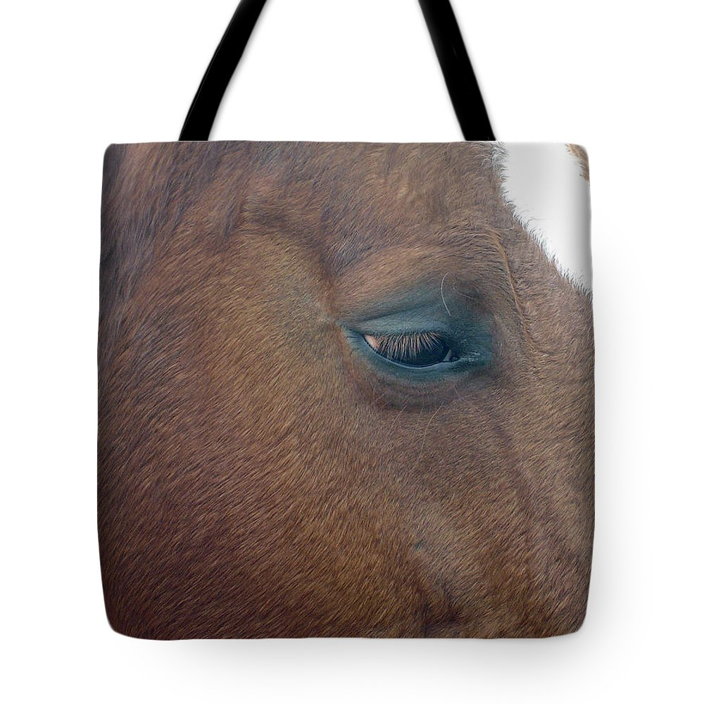 Horse Tote Bag featuring the photograph Sad Eyed by Shelley Jones