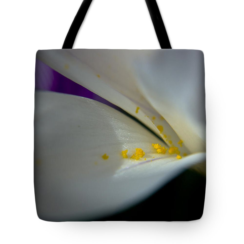 Safron Tote Bag featuring the photograph Safron by Teresa Mucha