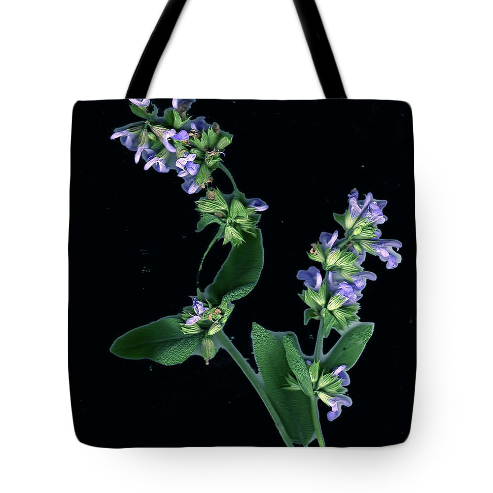 Tote Bag featuring the photograph Sage Blossom by Wayne Potrafka