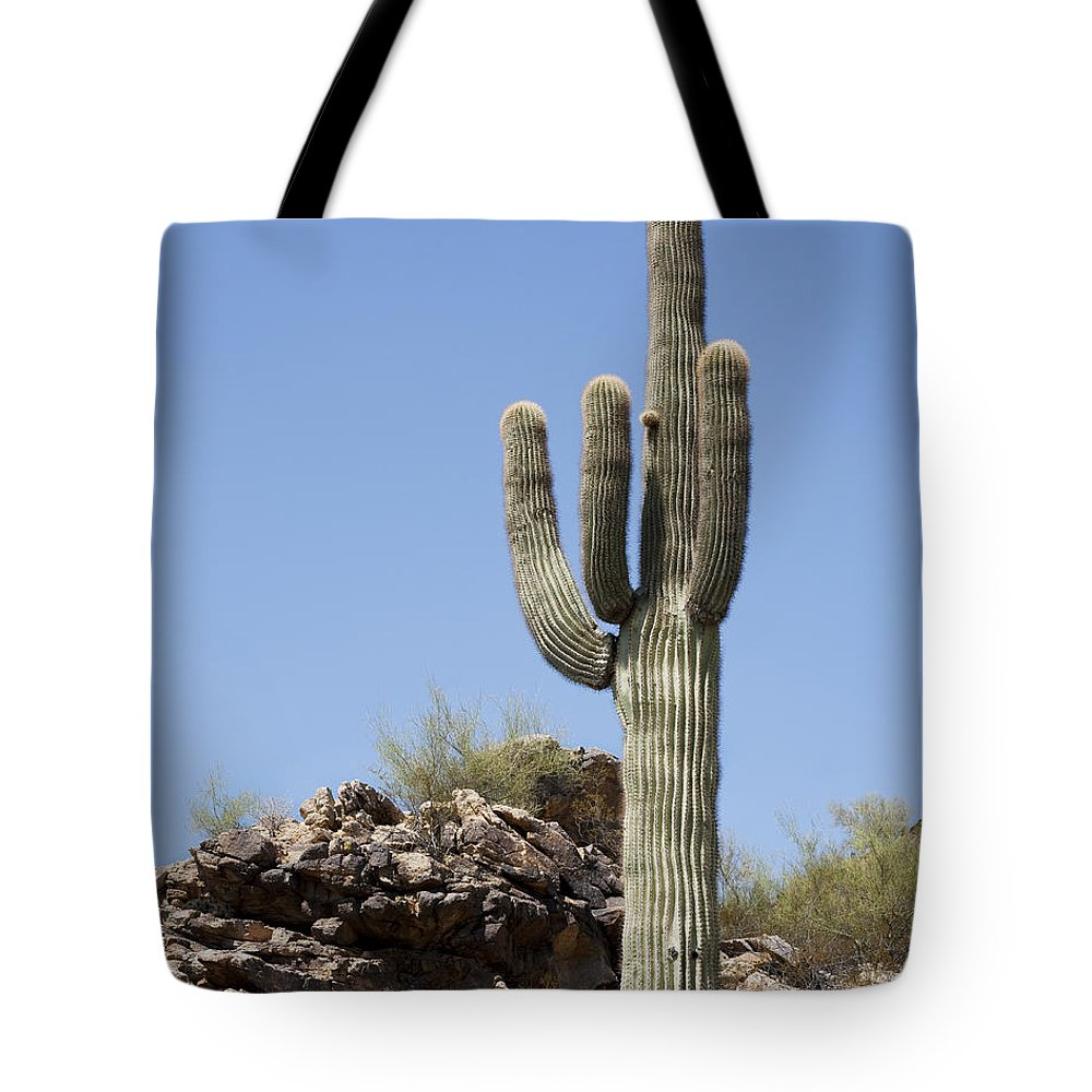 Saguaro Tote Bag featuring the photograph Saguaro 3 by Kelley King