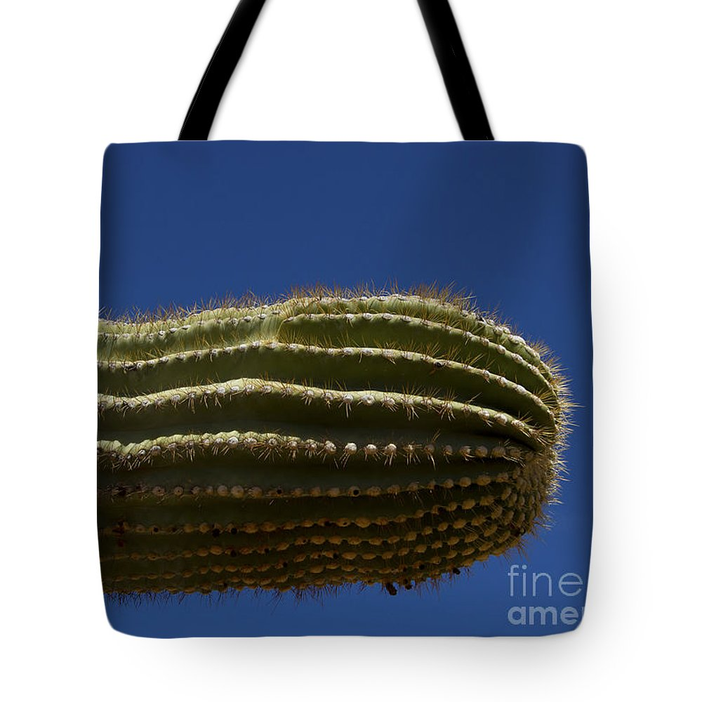Cactus Tote Bag featuring the photograph Sahuaro Arm-signed-#2414 by J L Woody Wooden