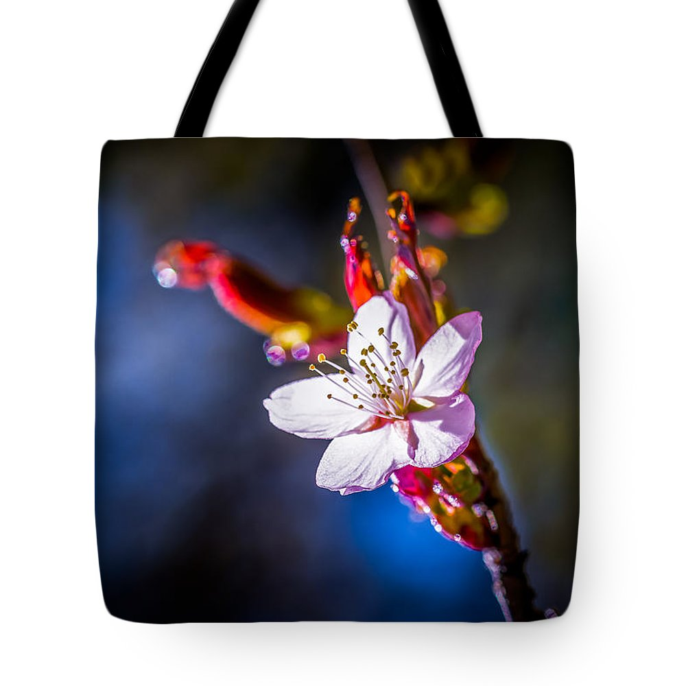 Cherry Tote Bag featuring the photograph Sakura - Japanese Cherry Flower by Alexander Senin