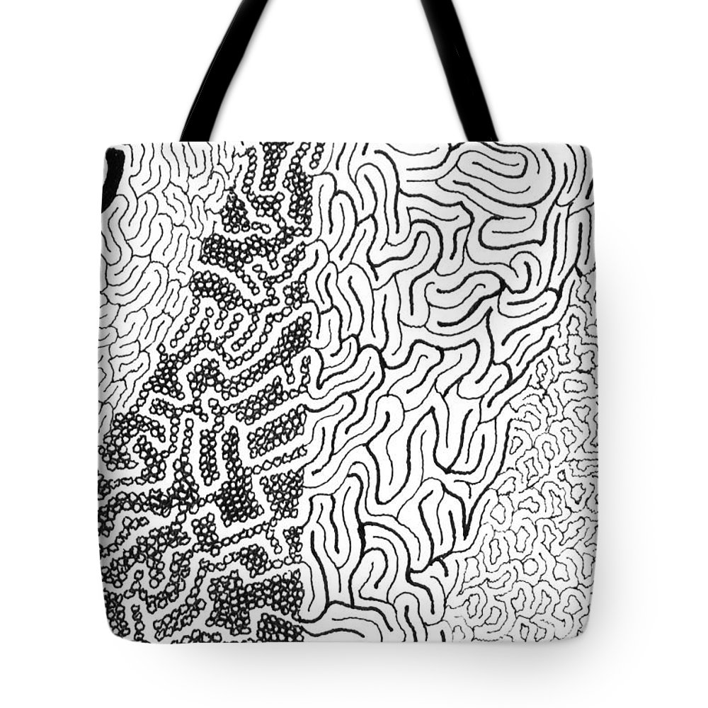 Mazes Tote Bag featuring the drawing Salmagundi by Steven Natanson