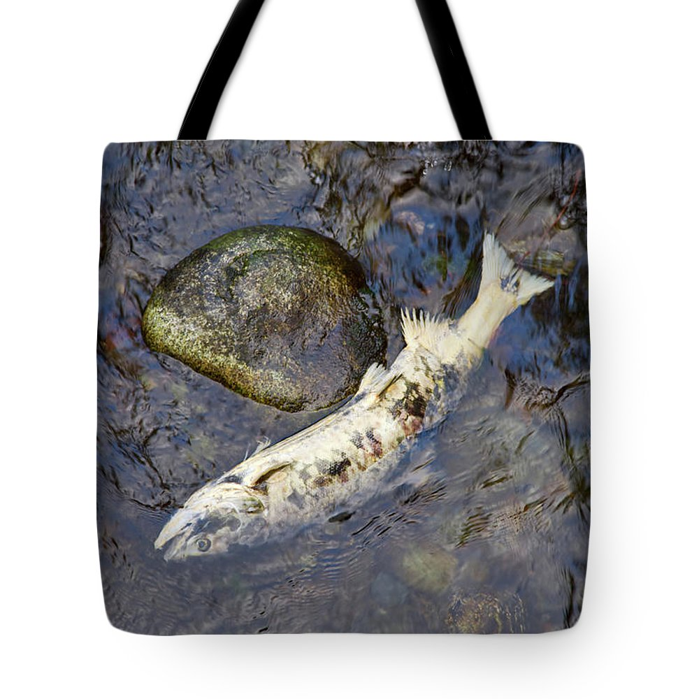 Salmon Tote Bag featuring the photograph Salmon Run by Louise Heusinkveld