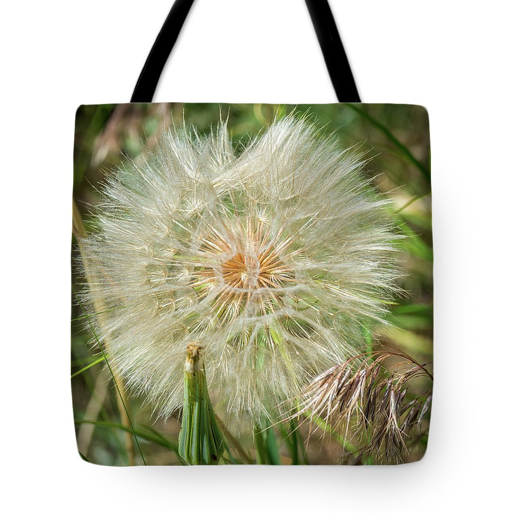 Nature Tote Bag featuring the photograph Salsify Seed Head by Michael Cunningham