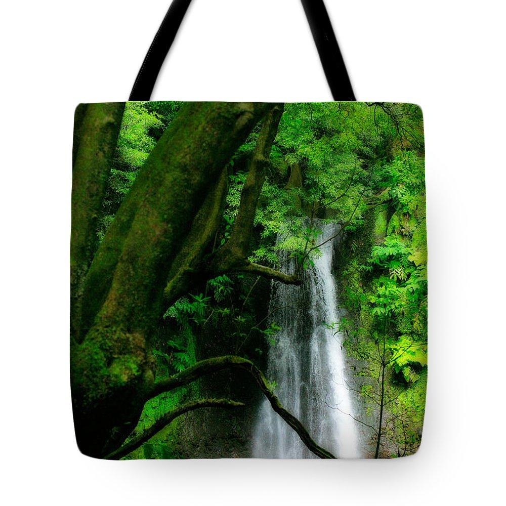 Environment Tote Bag featuring the photograph Salto Do Prego Waterfall by Gaspar Avila