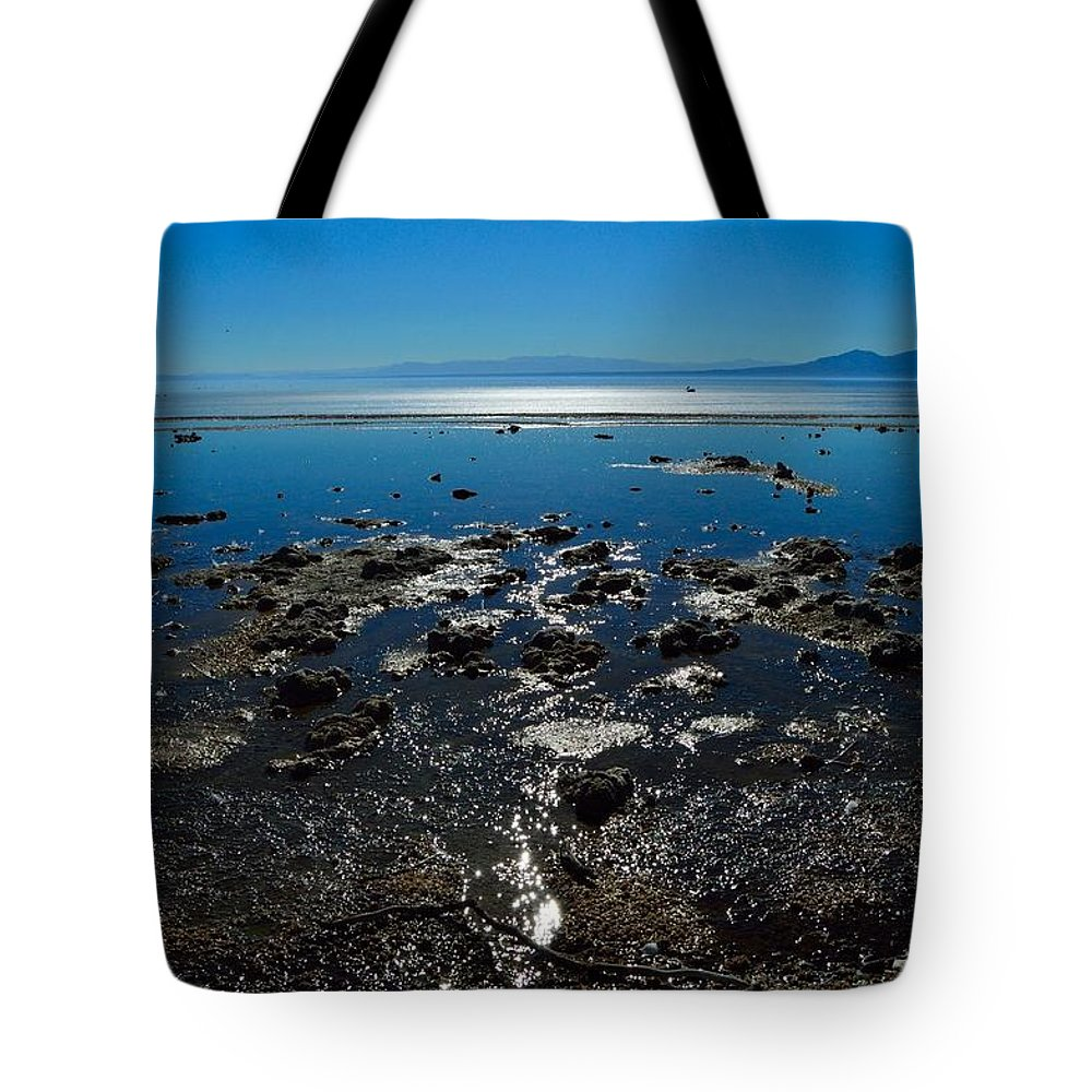 Landscape Tote Bag featuring the photograph Salton Sea by Sherri Hasley