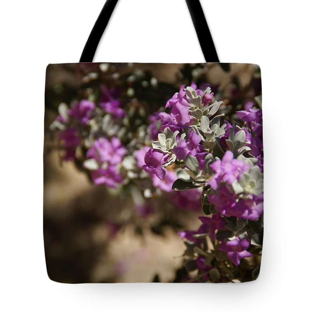 Sage Tote Bag featuring the photograph Salvia Dorrii by Linda Shafer