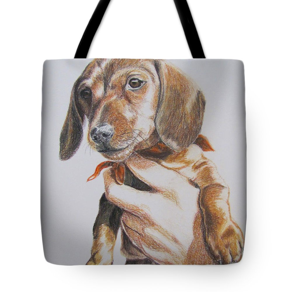Puppy Tote Bag featuring the drawing Sambo by Karen Ilari