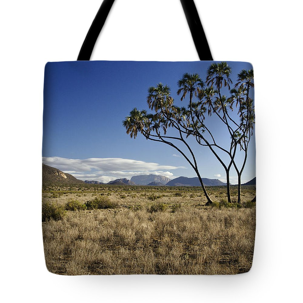 Africa Tote Bag featuring the photograph Samburu Safari by Michele Burgess