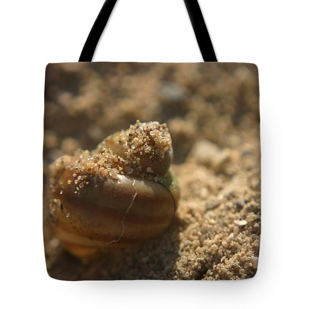 Sea Tote Bag featuring the photograph Sand Art by Melissa Haney