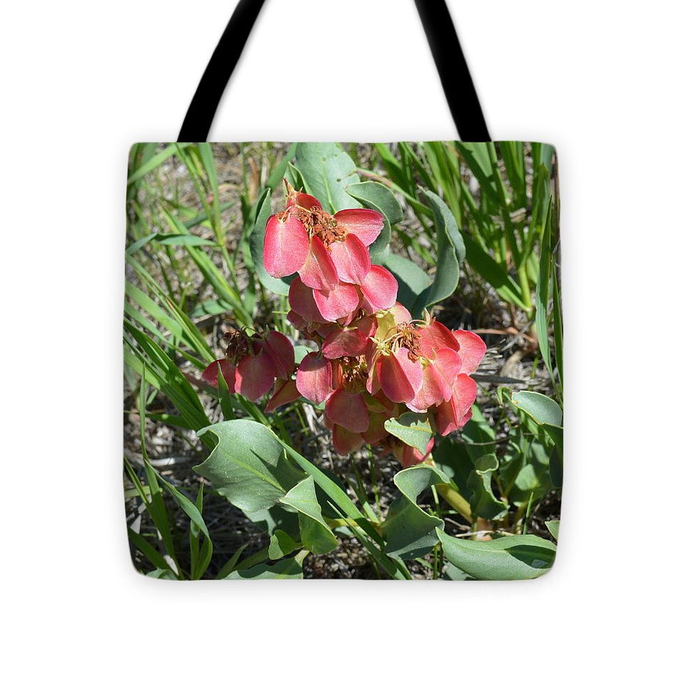 Flora Tote Bag featuring the photograph Sand Dock by Ed Mosier