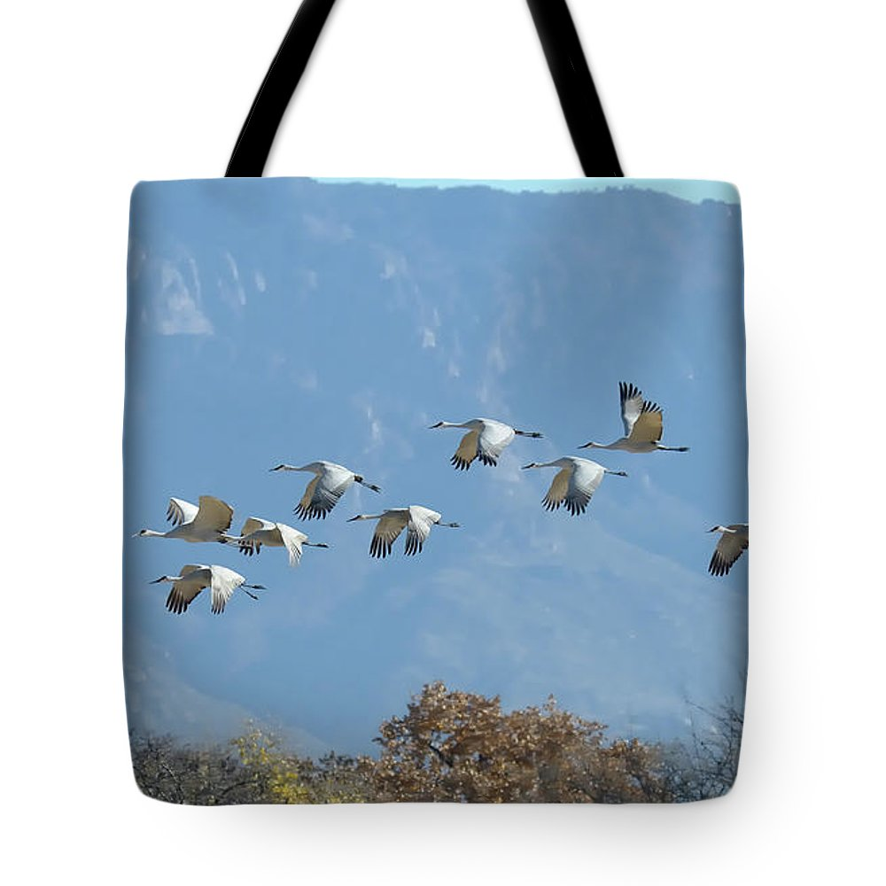 Southwest Usa Tote Bag featuring the photograph Sandhill Cranes In Flight by Alan Toepfer
