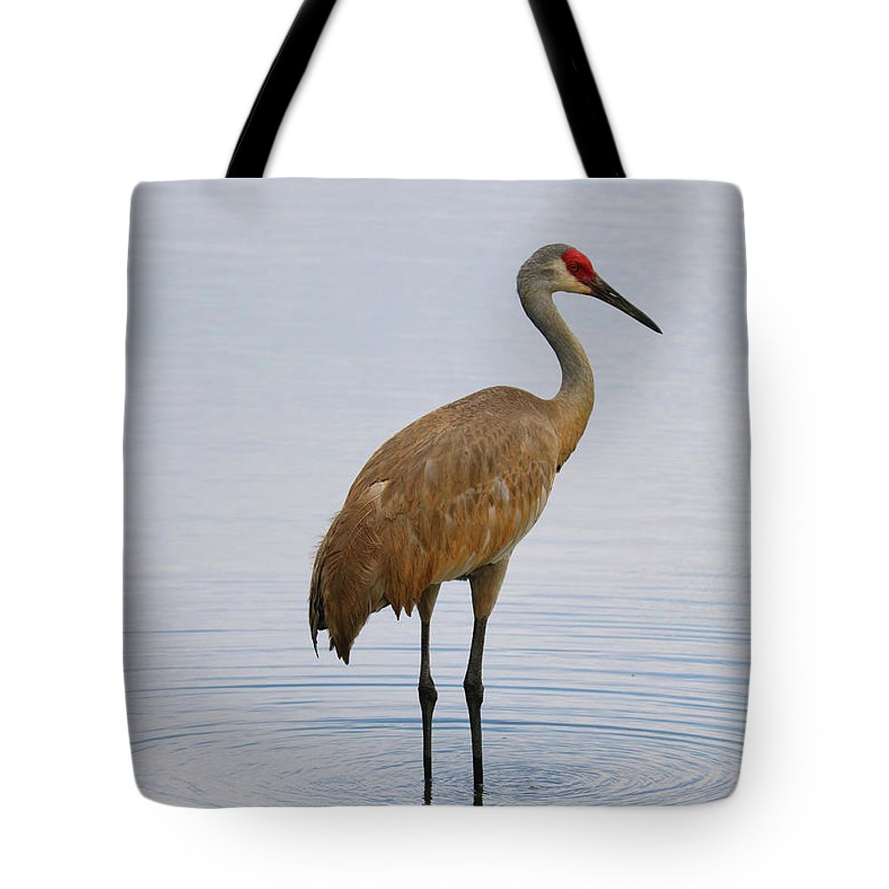 Sandhill Tote Bag featuring the photograph Sandhill Standing In Peaceful Pond by Carol Groenen