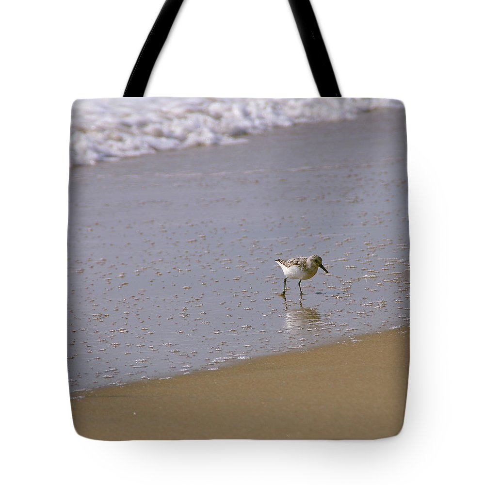 Ocean Tote Bag featuring the photograph Sandpiper 2 by Eric Dimeck