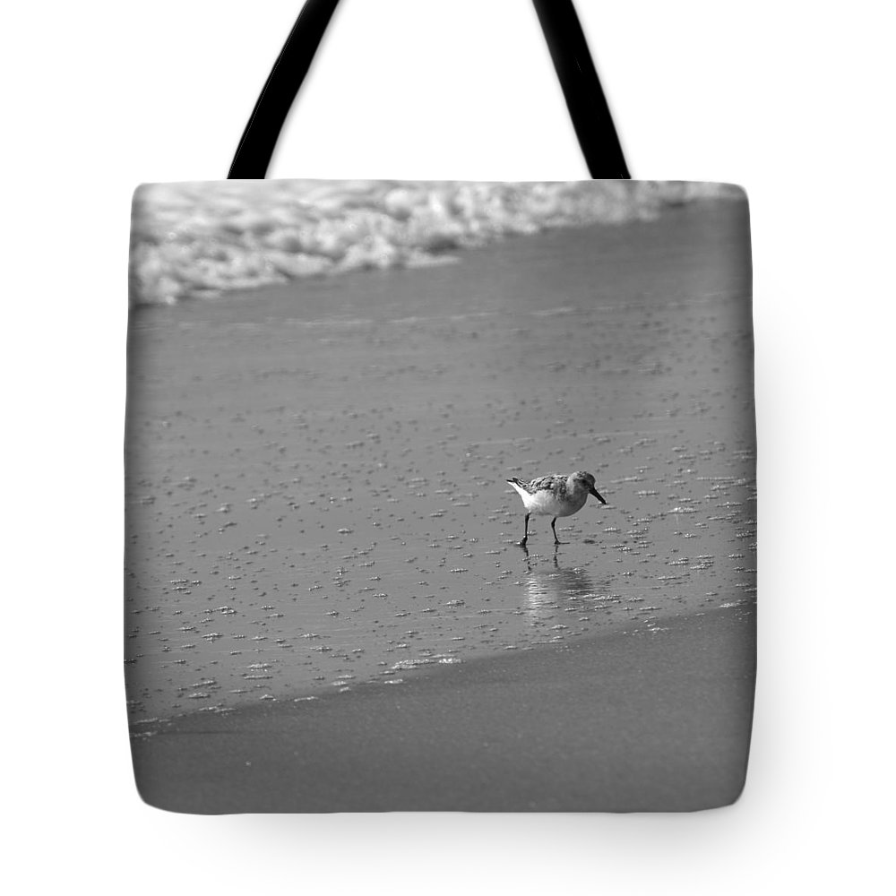 Ocean Tote Bag featuring the photograph Sandpiper Bw3 by Eric Dimeck