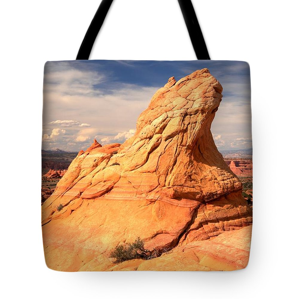 Coyote Buttes South Tote Bag featuring the photograph Sandstone Gopher by Adam Jewell