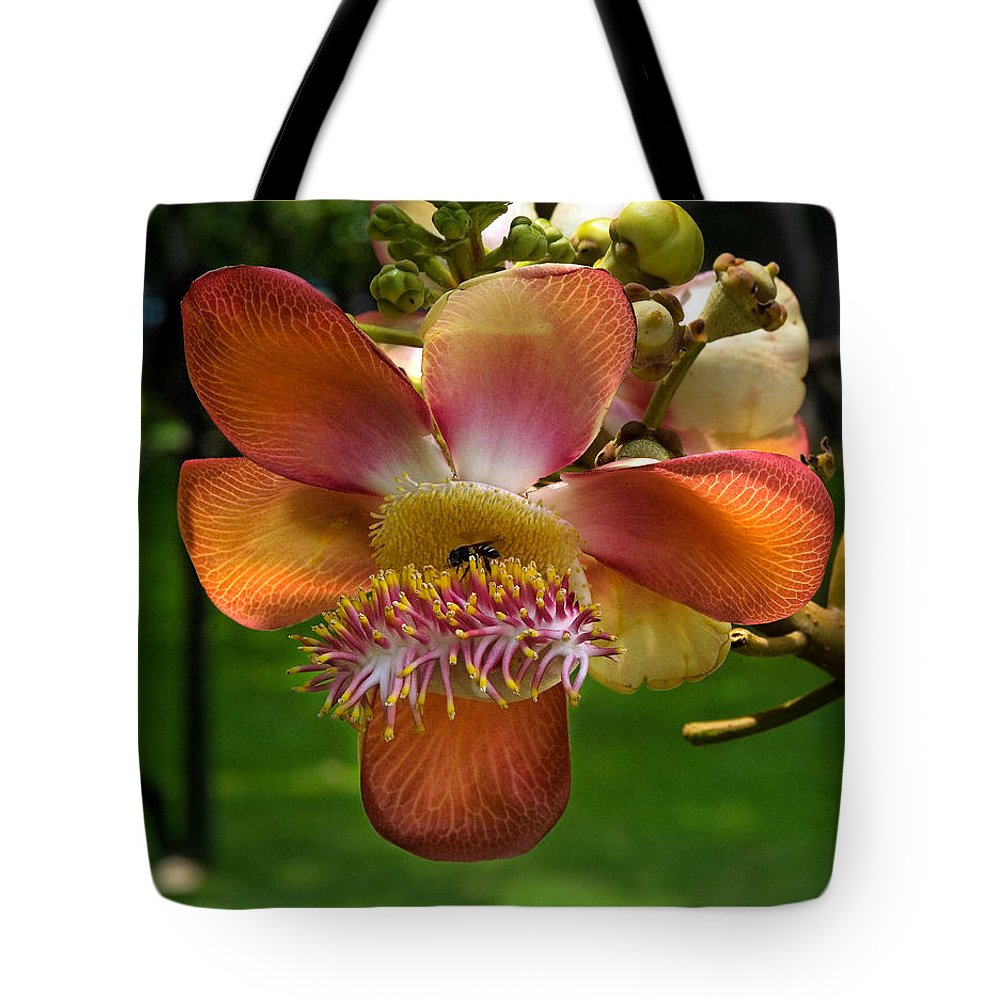 Scenic Tote Bag featuring the photograph Sara Tree Flower Dthb104 by Gerry Gantt