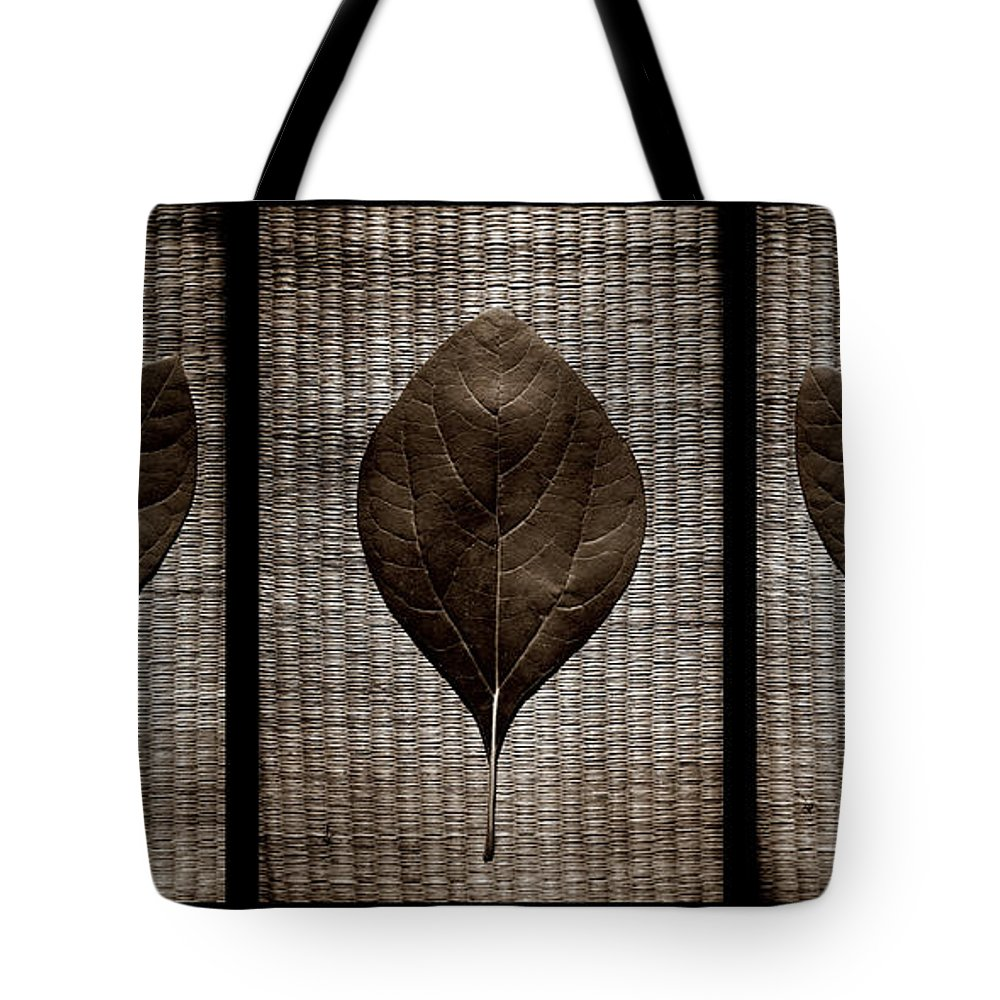 Sassafras Tote Bag featuring the photograph Sassafras Leaves With Wicker by Michelle Calkins