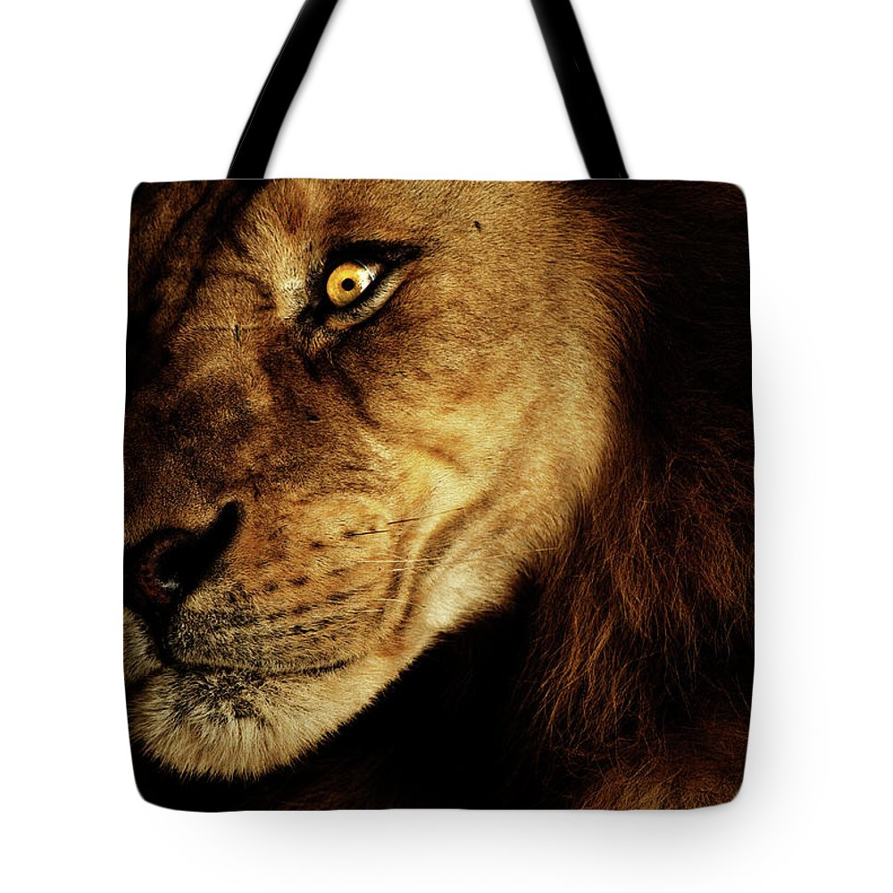 Lion Tote Bag featuring the photograph Savage by Andrew Paranavitana
