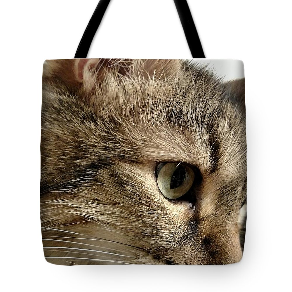 Cat Tote Bag featuring the photograph Savannah by Amanda Myers