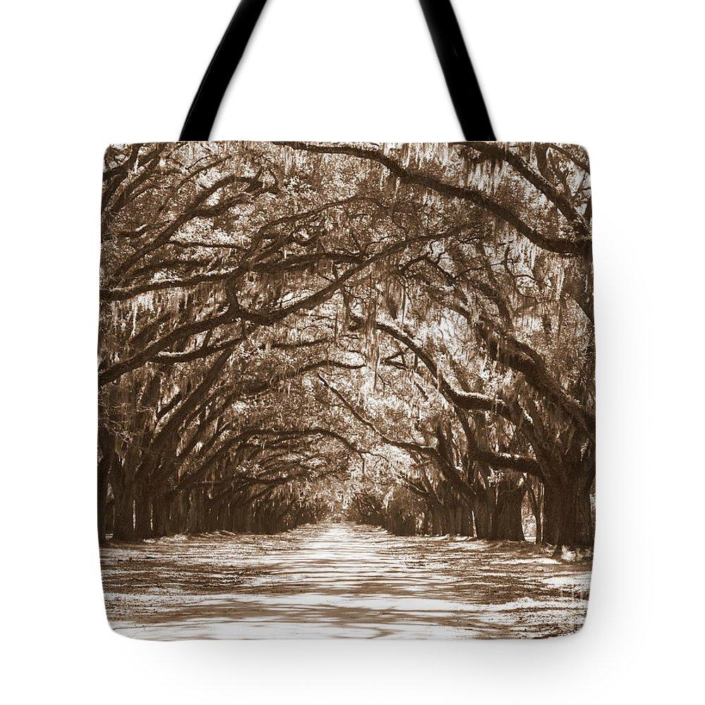 Savannah Tote Bag featuring the photograph Savannah Sepia - Glorious Oaks by Carol Groenen